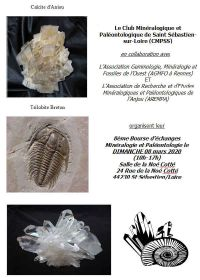 8ª Troca de Minerais e Fósseis