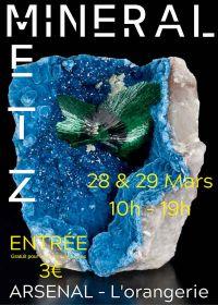 Feira de minerais, fósseis e gemas