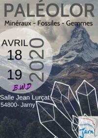 A 5ª edição da mostra Fósseis de Minerais e Jóias