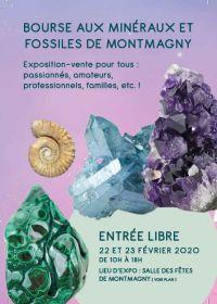 34 Troca de Minerais e Fósseis