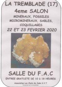 4 feira de minerais, fósseis, microminerais, conchas e areia
