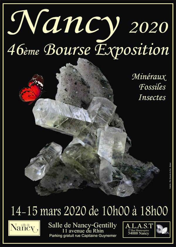 46ª exposição em bolsa de minerais fósseis e insetos