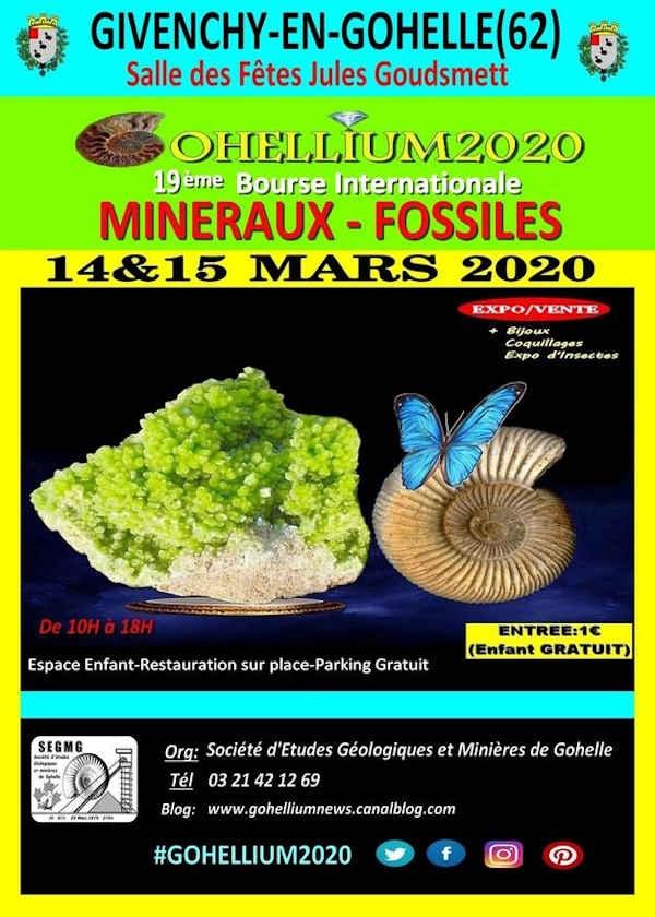 19ª Bolsa Internacional de Minerais Fósseis Gohellium 2020