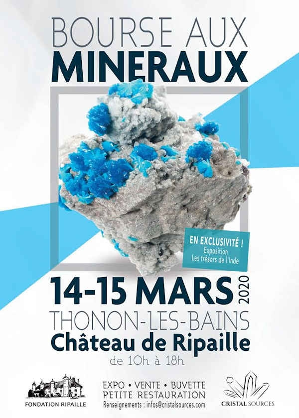 6ª Troca de Minerais e Fósseis