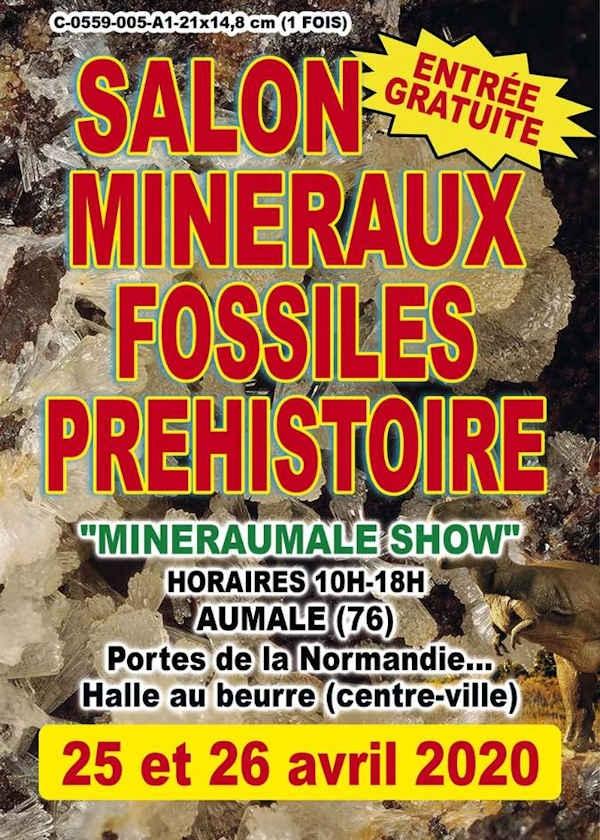 5ª concessão: Exposição Pré-Histórica de Minerais e Fósseis