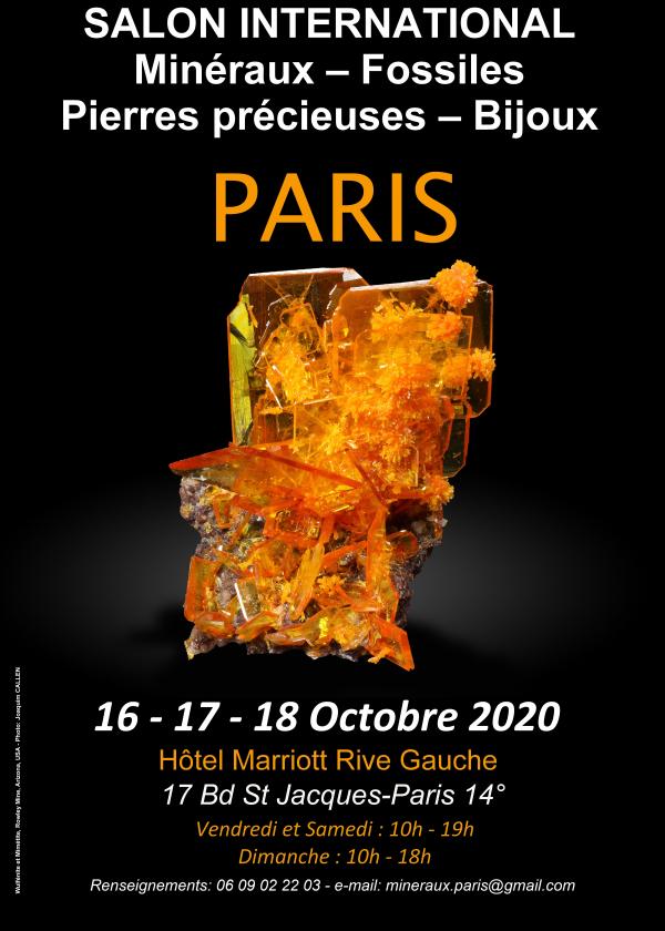 Feira Internacional de Joias com Pedras Preciosas de Minerais Fósseis de Paris