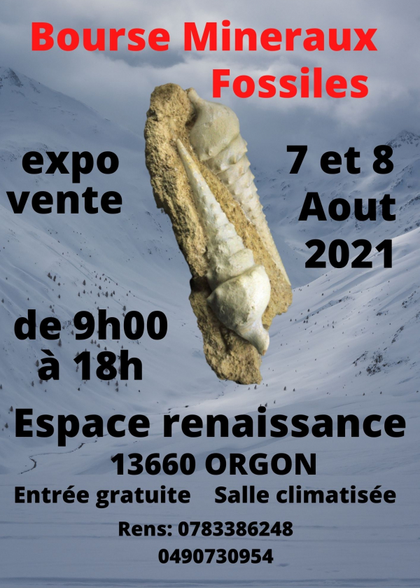 5º Troca de minerais fósseis de Orgon