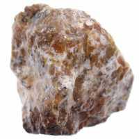 Opala dendrita