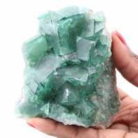 Cristais cúbicos de fluorita verde em fluorita maciça