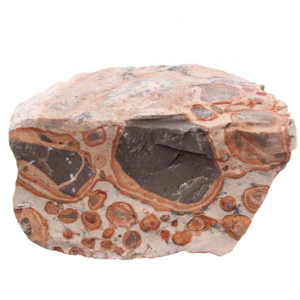 Leopardite