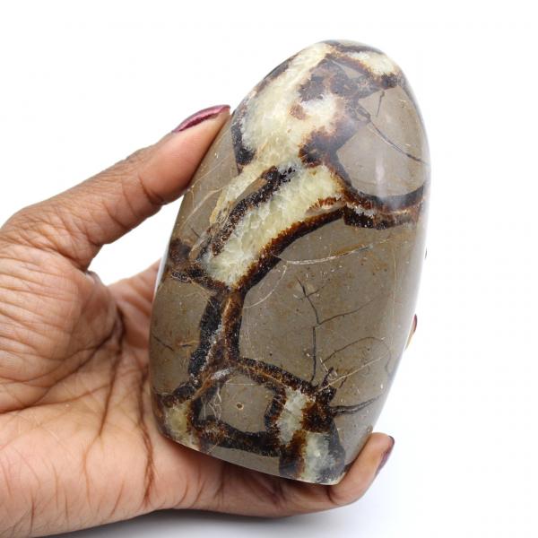 Pedra de septária polida